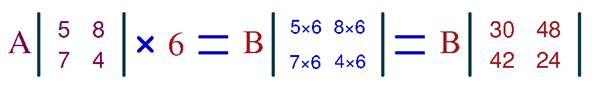 На рисунке изображен пример умножения матрицы А 2*2 на число 6.